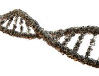 Temná DNA je vzácný, ale nikoliv neslýchaný pojem